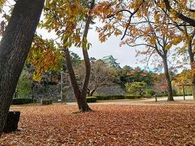 名城公園1